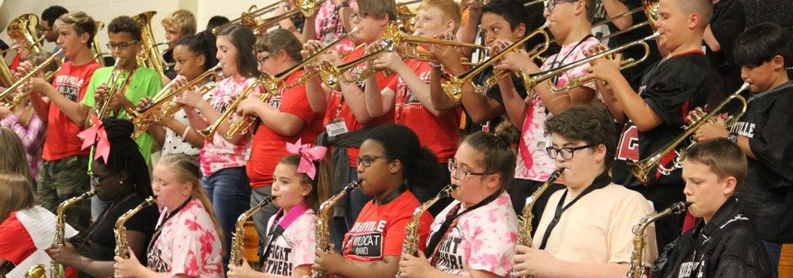 The Band Playing at the Pink Out Pep-Rally